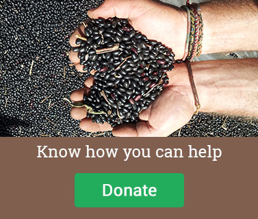 Donate to La Semilla Ministries